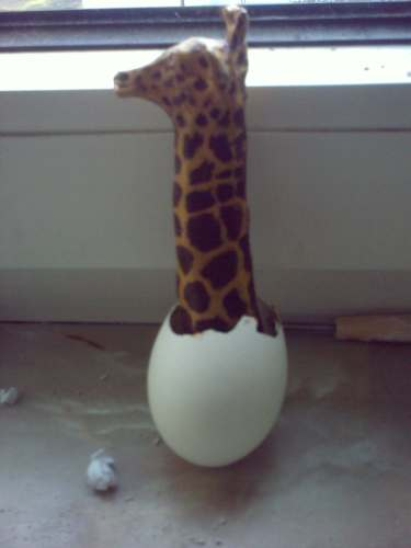 Giraffe hatching from egg