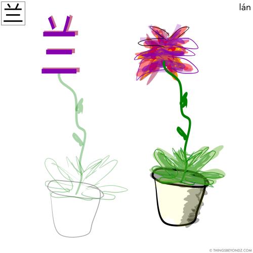 hanzi-lan2-orchid