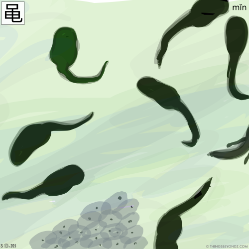 kangxi-radical-13-205-simplified-min3-frog