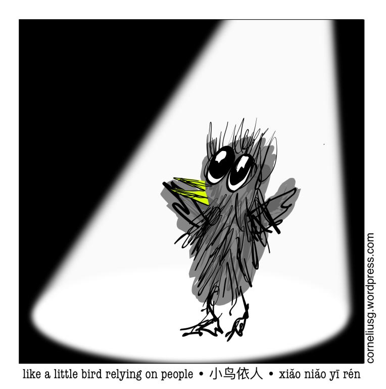 Little Bird B