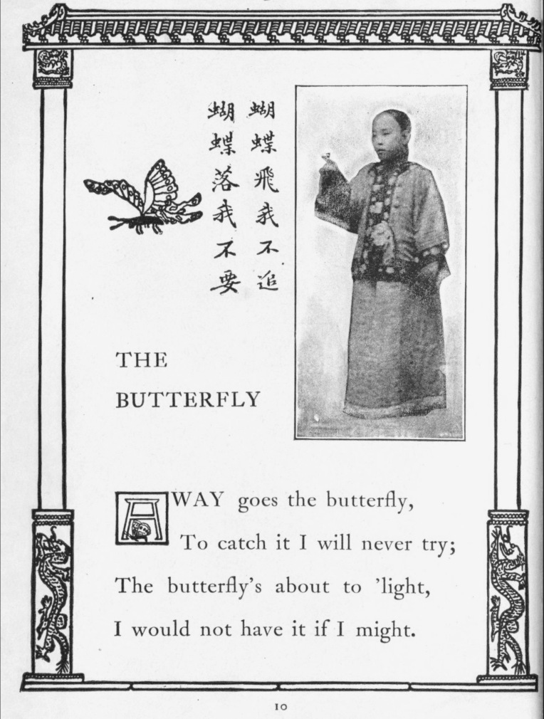 CMG The Butterfly
