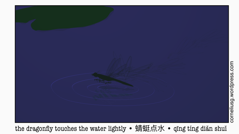 the-dragonfly-touches-the-water-lightly-4