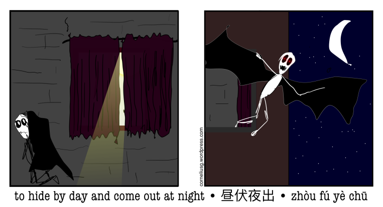 nocturnal-6